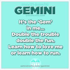 GEMINI-IS-FUN